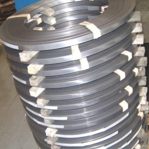 Nickel Strip, Monel Strip, Inconel Strip, Hastelloy Strip